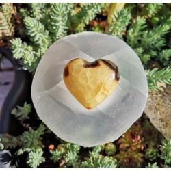 Coeur septaria 1