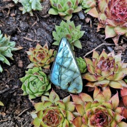 pierre percée labradorite bleue ciel
